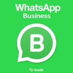 Ventajas y desventajas de Whatsapp Business